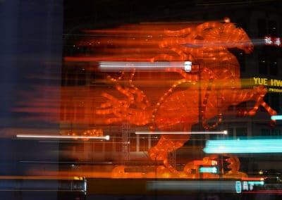 SG-DFD_1038BP-web